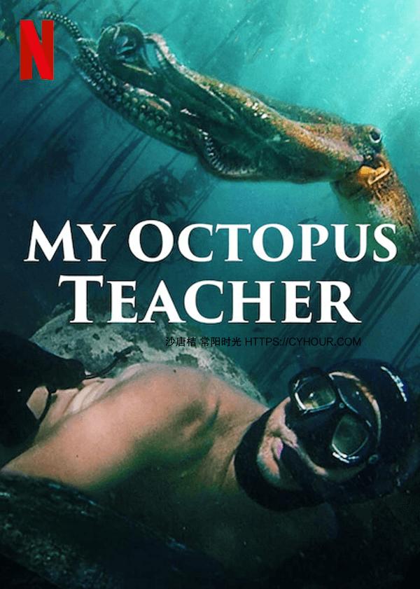 2020高分纪录片 My Octopus Teacher 我的章鱼老师 HD1080P.中文字幕 BT种子-沙唐桔