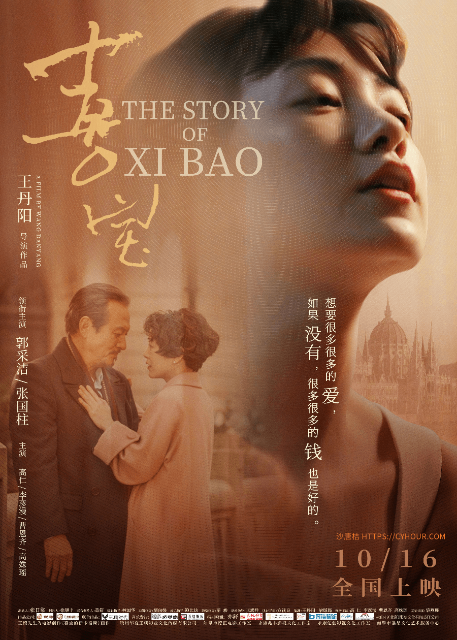 喜宝.1080p.bt.The Story of Hay Bo.4k.国语中字 (2020)-沙唐桔