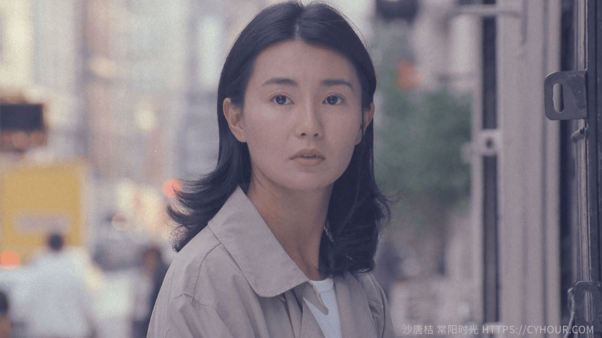 甜蜜蜜 (1996).BT.Comrades.Almost.a.Love.Story.1996.BluRay.1080p[粤语中字]-沙唐桔