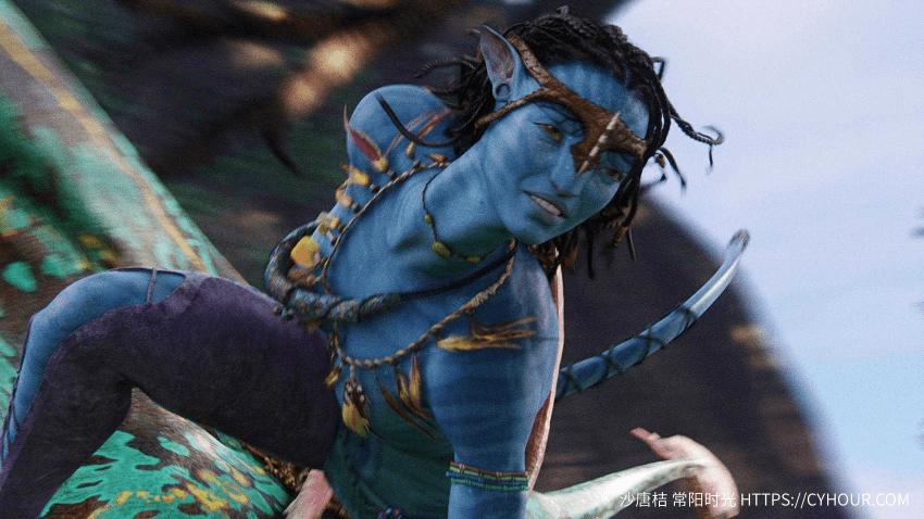 阿凡达 BT Avatar 4k 2160p 1080p 2009 3D 蓝光 英语中字-垃圾站