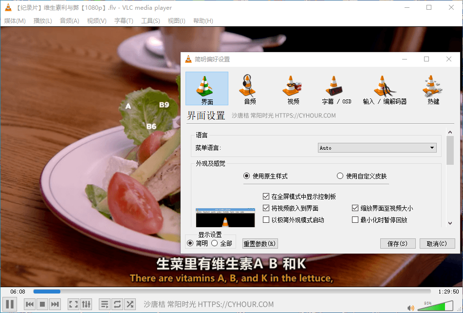 VLC media player 最棒的开源播放器-沙唐桔