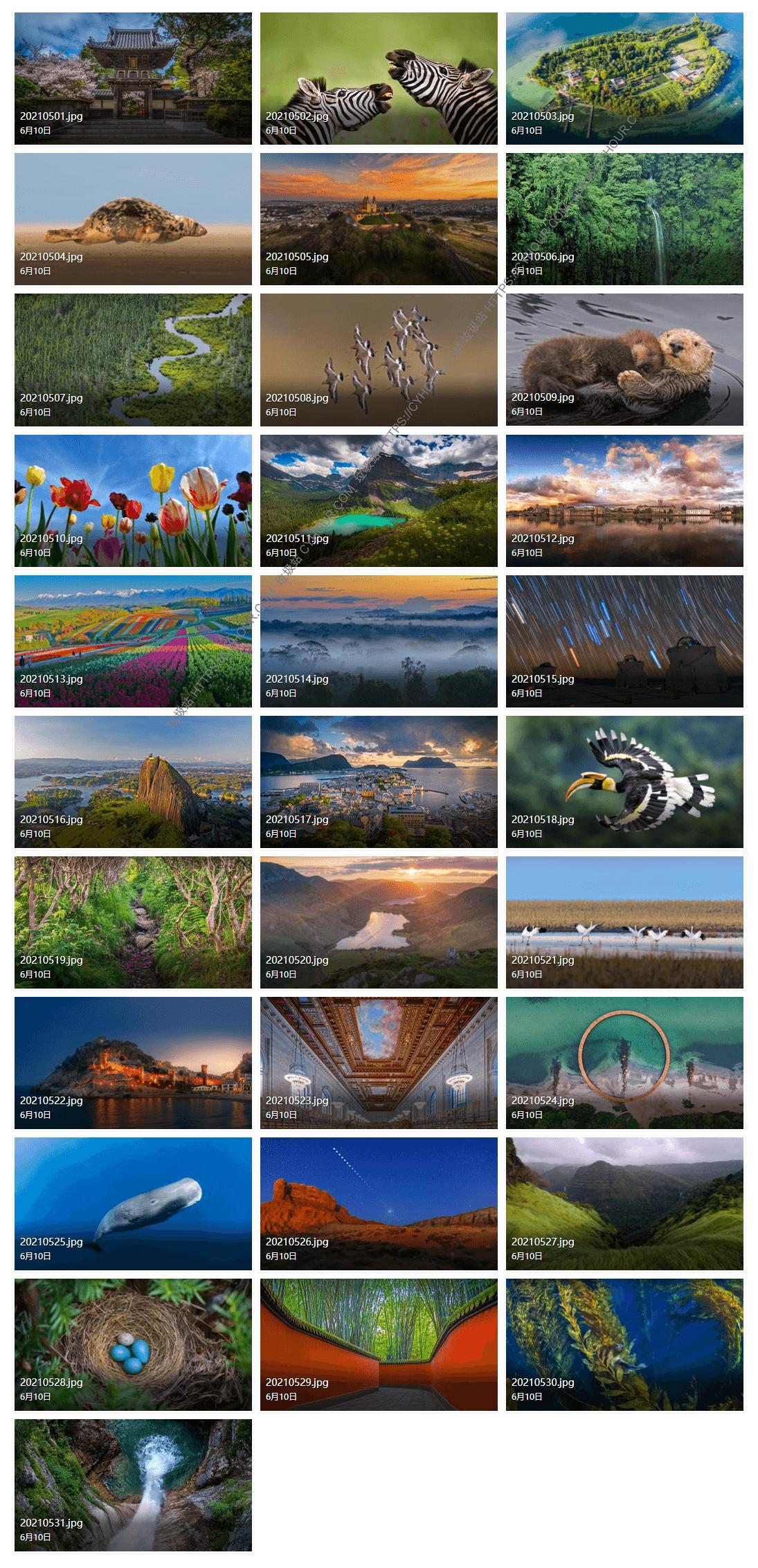 2021年05月 微软 Bing 必应壁纸图片 31张 4K高分辨率 打包下载-垃圾站