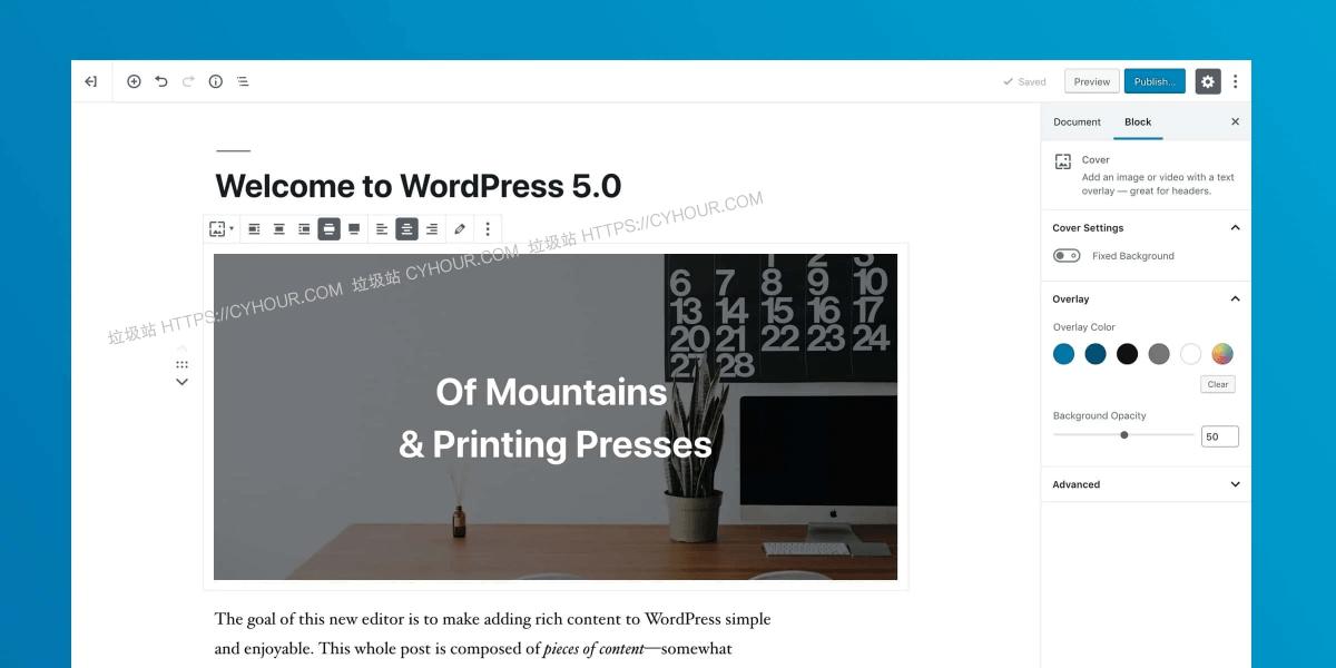 WordPress 5.0+ 禁用 Gutenberg & WordPress 5.8+ 禁用 Widget 块编辑器-垃圾站
