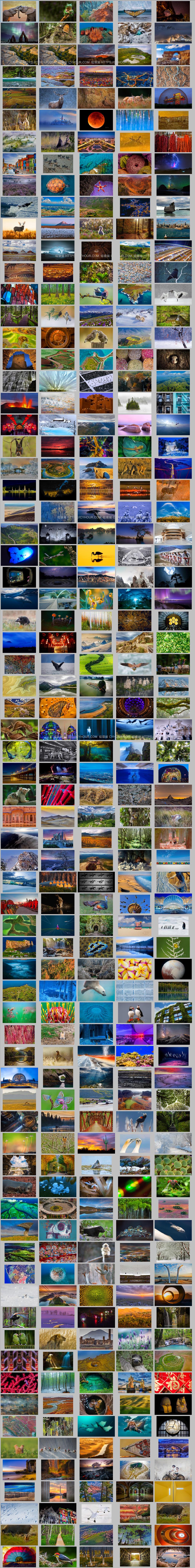 2016 年微软 Bing 必应壁纸图片 共361张 打包下载-垃圾站