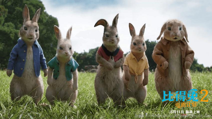 比得兔2 逃跑计划 4K 1080p Peter Rabbit 2: The Runaway (2021) 英语中字-垃圾站