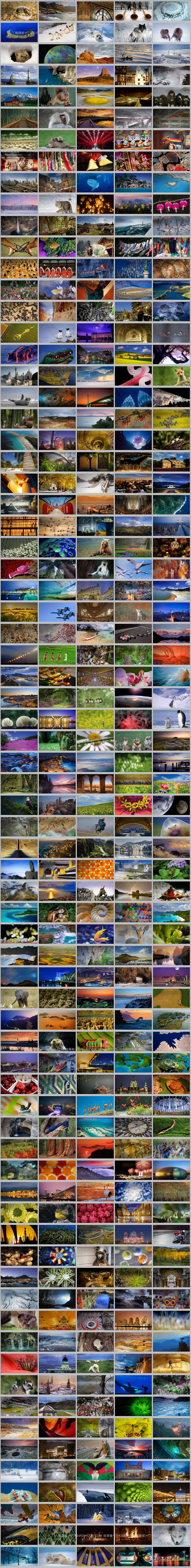 2011 年微软 Bing 必应壁纸图片 共365张 打包下载-垃圾站