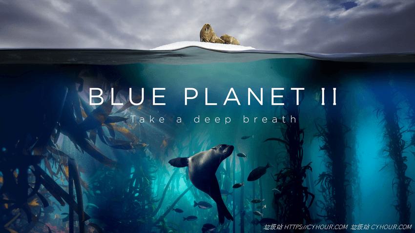 蓝色星球2 4K 全7集 Blue Planet II 1080p (2017) 英语中字-垃圾站